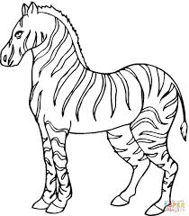 zebra coloring book 6