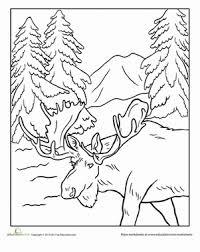 animal coloring worksheets 2. Wonderful Worksheets Worksheet Alaska Moose Coloring Page With Animal Worksheets 2 G