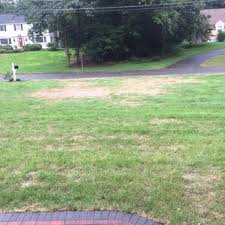 photo of trugreen lawn care windsor ct united states