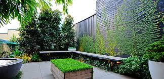 Small Picture Backyard Landscaping Ideas Sydney izvipicom