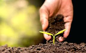 bulk potting soil near me. Contemporary Soil Bulk Potting Soil Garden Near Me All Information Of  Salem   In Bulk Potting Soil Near Me O