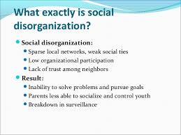 essays on social disorganization theory cf essays on social disorganization theory