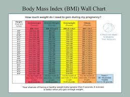 Body Mass Index Chart For Infants Stephanie Mattfeld Beaudette M Ed Rd Ppt Video Online