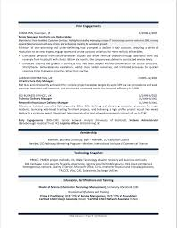 Cio Resume Example Examples Of Resumes