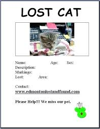 Missing Cat Poster Template Lost Cat Flyer Template Dog Adoption Flyer Template Unique Lost Cat