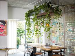 Plant Interior Design Cool Bring The Outdoors In With Our Favorite Ways To Display House Plants