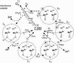 142606903fbbb37b8bd5b79a5b8915c5 oxidation state organic chemistry 25 best ideas about oxidation state on pinterest chemistry on metric conversion worksheet with answers chemistry