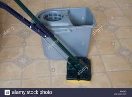 Kitchen Floor Mops Still Life Studio Close Up A Sponge Squeegee Mop And Grey Bucket