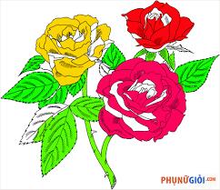 Tranh tô màu hoa hồng đẹp nhất dành cho bé tập tô