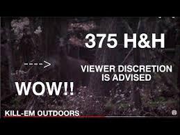 375 H H Deer Kill