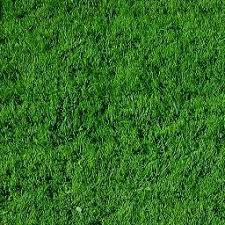 Grass background tile Seamless As You Can See Ive Livened Up The Green Of The Grass And Deepened The Brown Of The Dirt The Desired Appearance Should Fit The Theme And Mood Of Level Angelfire Tutorial Making Isometric Tiles