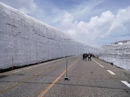 「立山アルペンルート 6月」の画像検索結果