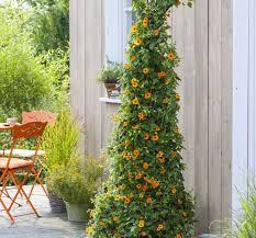 """Résultat de recherche d'images pour """"gifs fauteuil de plastique rouge pour jardin"""""""