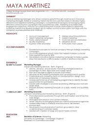 Marketing Director Resume Executive Marketing Director Resume ...