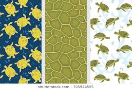 Turtle Pattern New Turtle Shell Pattern Images Stock Photos Vectors Shutterstock