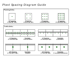 Square Foot Garden Plant Spacing Chart Plants Per Square Feet Chart Plant Spacing Diagram Guide