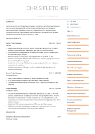 Senior Project Manager Resume Samples Templates Visualcv