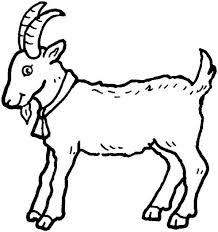 Small Picture 269 best OLDMACDONALDSFARM images on Pinterest Animals Donkeys