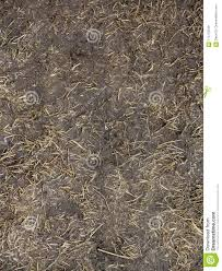 dirt grass texture seamless. Download Black Soil With Dried Grass BackgSeamless Texture Of The Ground Dry Herbs. Stock Dirt Seamless