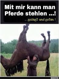 Mit Mir Kann Man Pferde Stehlen Lustige Bilder Sprüche Witze