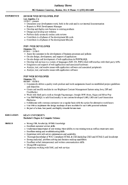 Web Developer Resume Sample Php Web Developer Resume Samples Velvet Jobs inside Sample Php 9