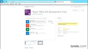 Sharepoint 2013 Site Templates Using The Developer Site Template