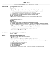 Underwriting Assistant Resume Underwriter Assistant Resume Samples Velvet Jobs 8