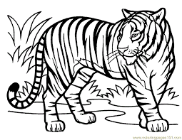 Small Picture Tiger Coloring Page Free Tiger Coloring Pages ColoringPages101com