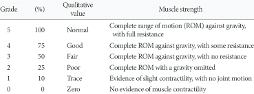 Mmt Grades Manual Muscle Testing Grading Mmt 1 Download Table