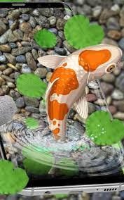 ikan hidup wallpaper 3d hidup koi ikan ...