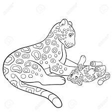 Vettoriale Disegni Da Colorare Madre Jaguar Con Il Suo Piccolo