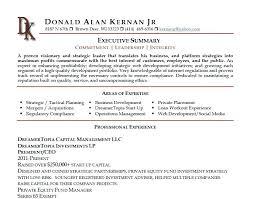 Business Resumes Summary For Resumes Executive Summary Resume Business Development 100 57
