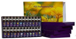 care kits flower essence services