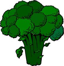 broccoli clipart. Brilliant Broccoli Broccoli Clipart 1 Intended