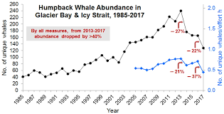 Recent Declines In Humpback Whales In Glacier Bay Icy