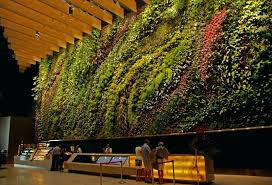 vertical gardens s garden kit singapore