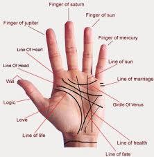 Hand Mudras Chart Science Of Mudra