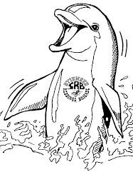 Small Picture Dolphins happy dolphin coloring page coloring pages