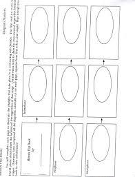Meiosis Flip Book Cell Reproduction Vocab Pegitboard