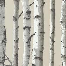 Irvin Birch Tree Wallpaper, Bolt rustic-wallpaper