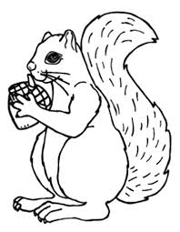 Acorn Gift For Squirrel Coloring Pages Animal Coloring Coloring