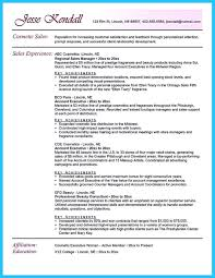 Sales Representative Resume samples   VisualCV resume samples database LiveCareer Summary On Resume Examples professional summary for resume examples i  professional summary resume examples for software