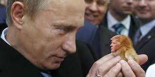 "Результат пошуку зображень за запитом ""Intrusion of Putin's Russia in US elections"""