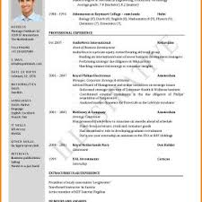 Resume Example For Job Application In Malaysia New Resume Example ...