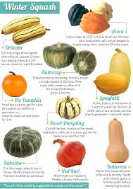 kabocha squash acorn delicata huh if you re confused by all those peculiar winter squash at the market this handy guide will help you choose