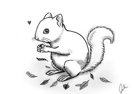 Small Picture Hungry Squirrel by adaydreamer animals drawing