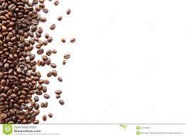 coffee beans border. Plain Beans Coffee Beans At Border On Beans Border 4