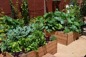 Small Picture Veggie Garden Design Garden Design Ideas