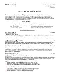 Skill Set Example For Resume Bold Design Ideas Skill Set Resume 60 Examples Of Resumes Based Skill 19
