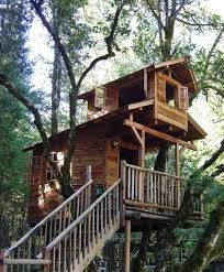 How To Build A Treehouse In Your Own Backyard  Carecom CommunityHow To Build A Treehouse For Adults